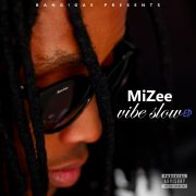 MiZee: The Vibe Slow EP.