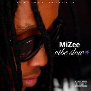MiZee: The Vibe Slow EP.