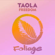 Foliage Records remixes Taola's 'Freedom' ( Original Mix)