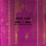 Veezo View – What I Want(Prod by Martinigottheacid)