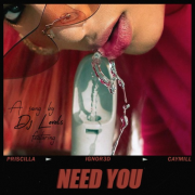 Dj Levels – Need You (Feat. Priscilla, IGNOR3D & Caymill)