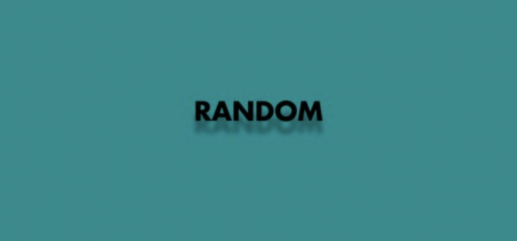 Flex The Ninja & Veezo View – Random