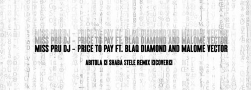 Stream Shaba Stele's remix to 'Price to Pay', a Miss Pru Dj, Blaq Diamond & Malome Vector Cover