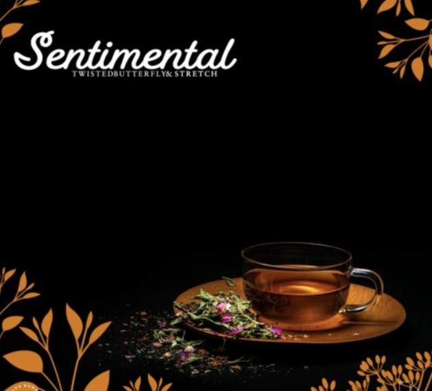 Check out Twisted Butterfly's 'Sentimental' ft Stretch